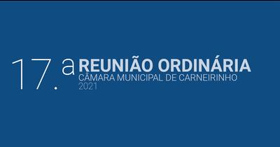 Resumo da 17.ª reunião ordinária de 2021